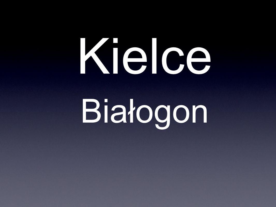 Kielce Białogon