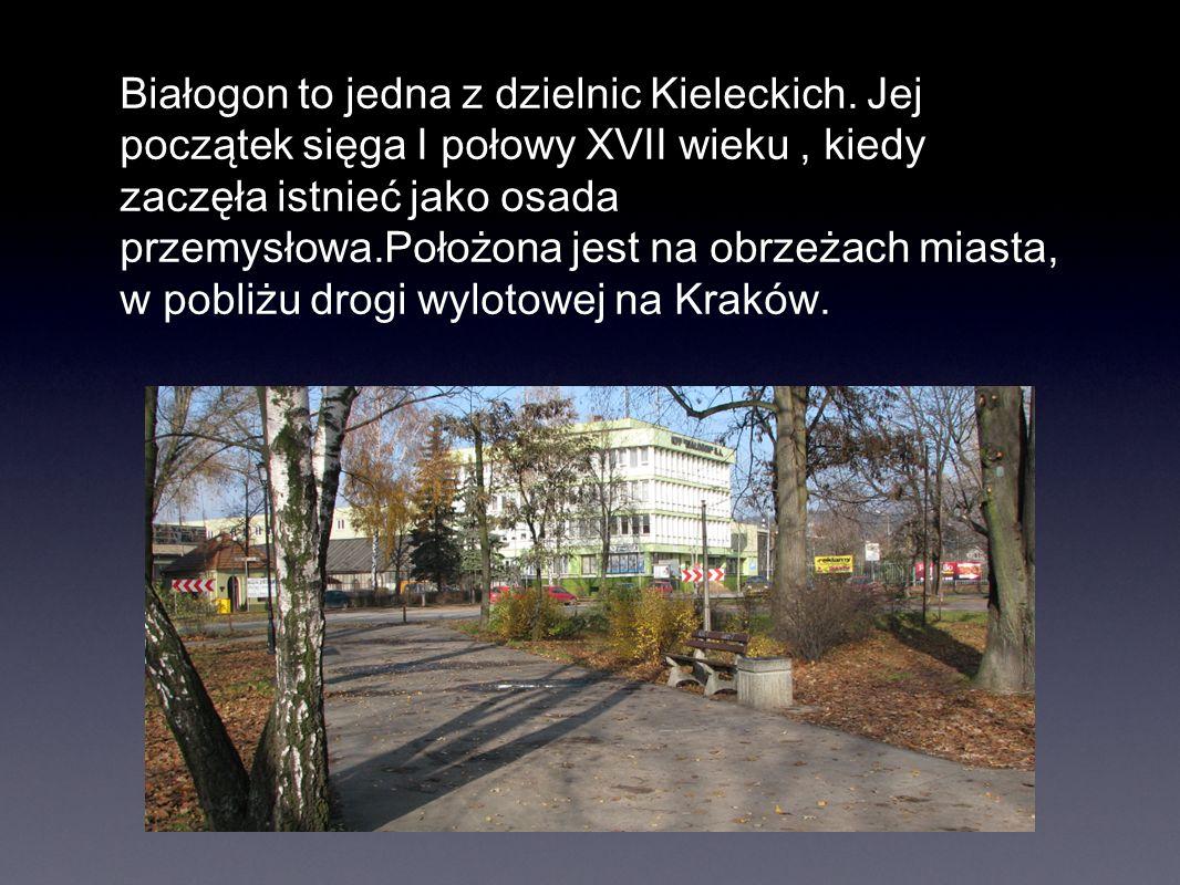Białogon to jedna z dzielnic Kieleckich