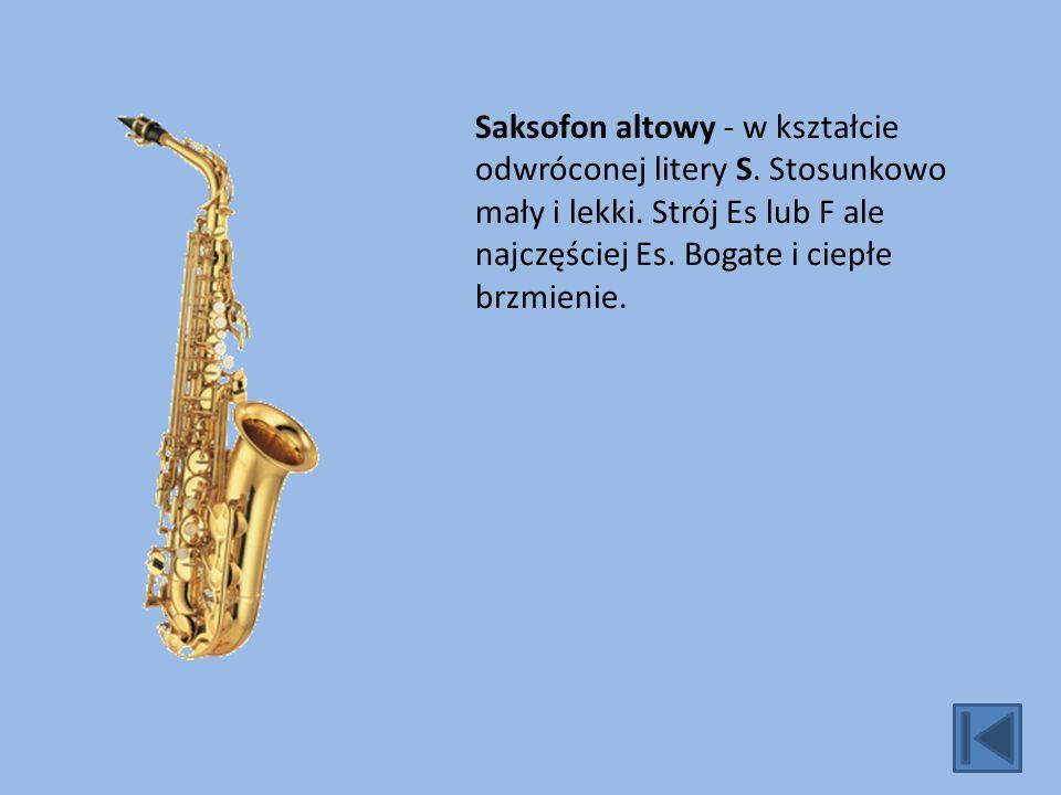 Saksofon altowy - w kształcie odwróconej litery S