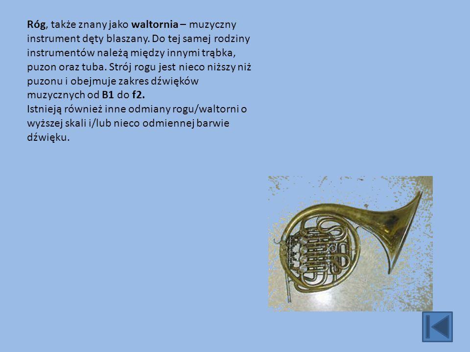 Róg, także znany jako waltornia – muzyczny instrument dęty blaszany