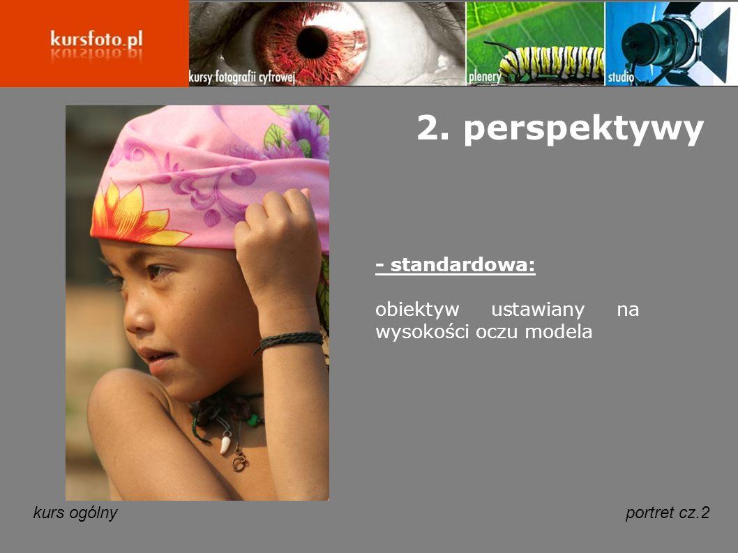 2. perspektywy - standardowa: