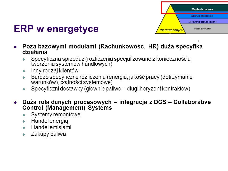 Warstwa danychWarstwa biznesowa. Układy sterowania. Sterowanie zaawansowane. Warstwa aplikacyjna. ERP w energetyce.