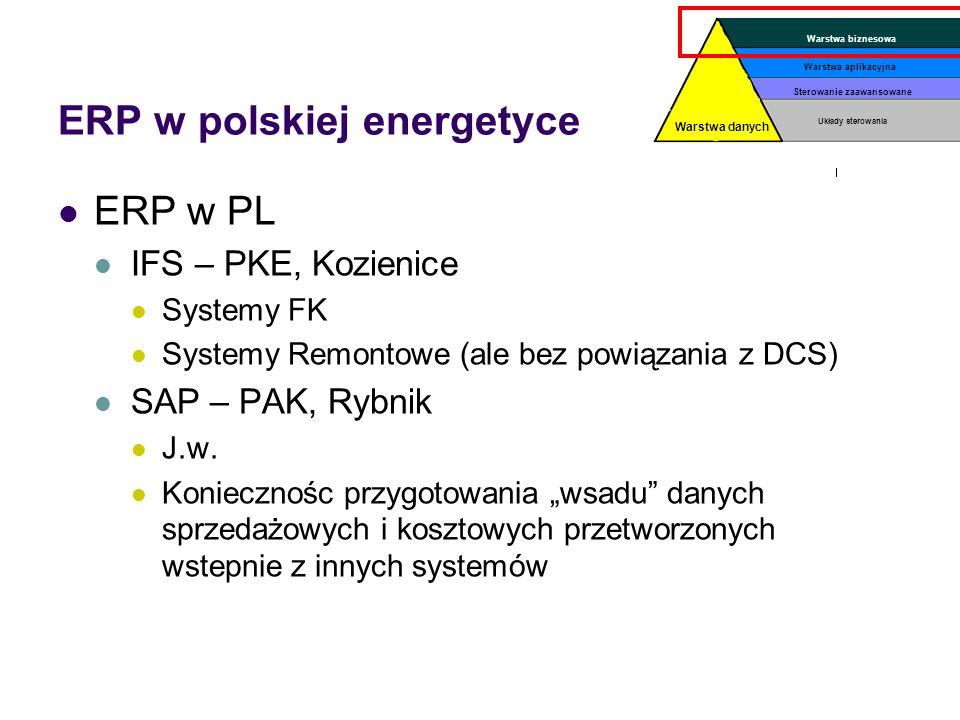 ERP w polskiej energetyce