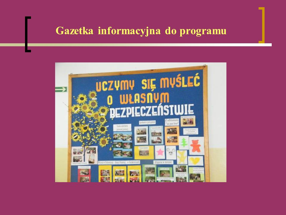 Gazetka informacyjna do programu