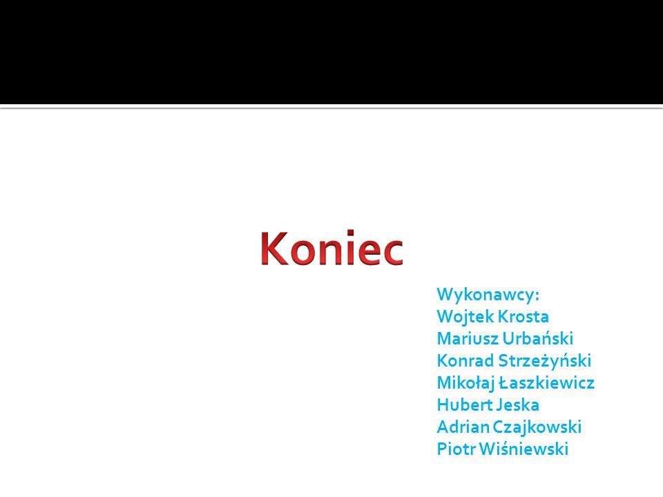 Koniec Wykonawcy: Wojtek Krosta Mariusz Urbański Konrad Strzeżyński