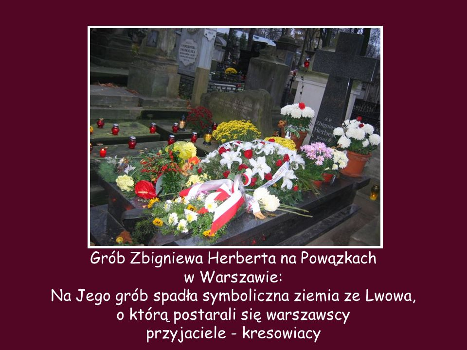 Grób Zbigniewa Herberta na Powązkach w Warszawie: Na Jego grób spadła symboliczna ziemia ze Lwowa, o którą postarali się warszawscy przyjaciele - kresowiacy