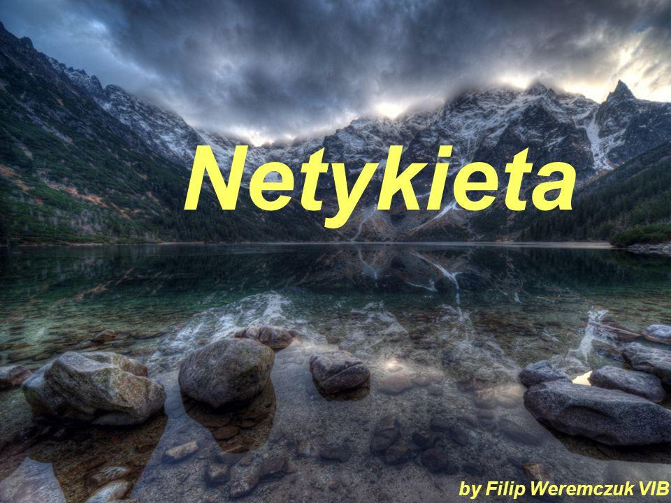 Netykieta by Filip Weremczuk VIB
