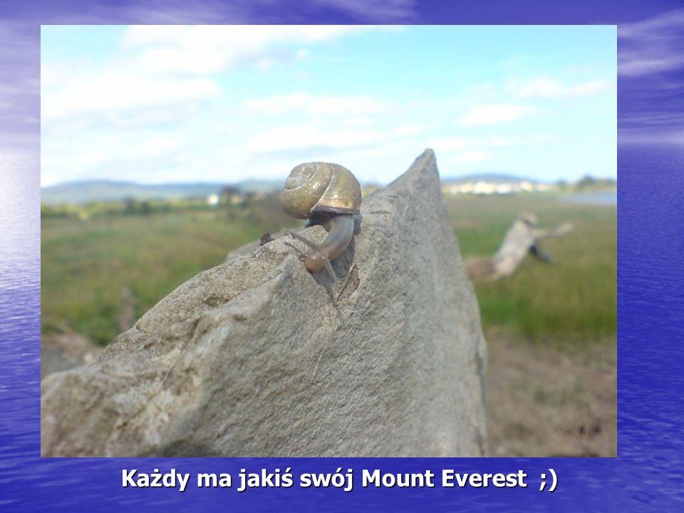 Każdy ma jakiś swój Mount Everest ;)