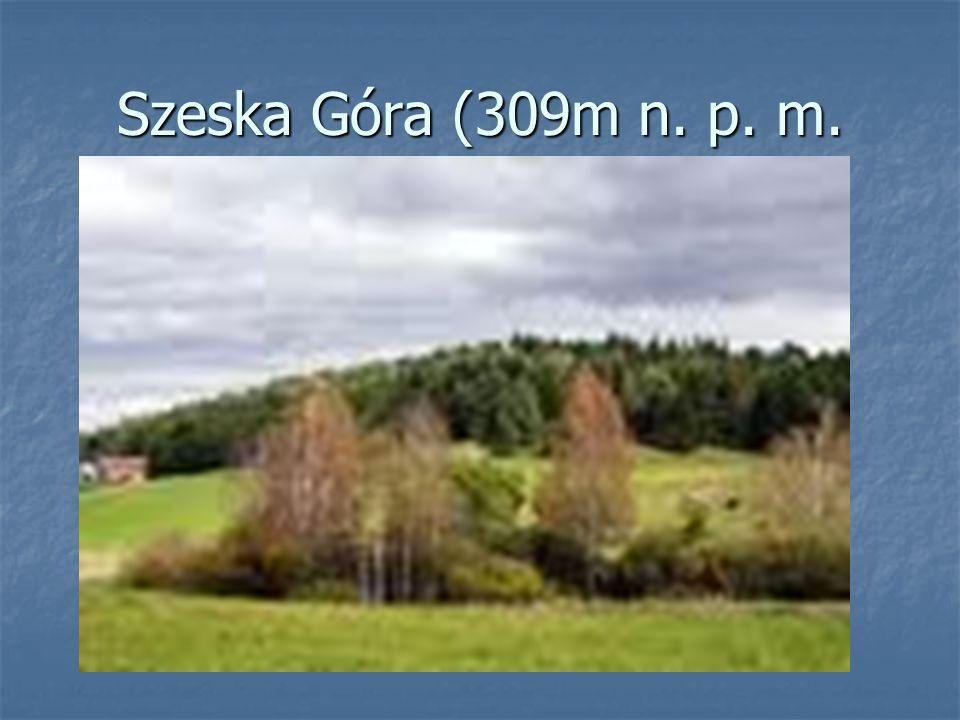 Szeska Góra (309m n. p. m.