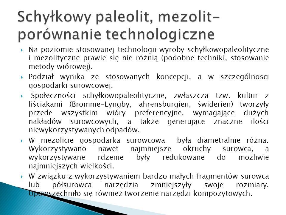 Schyłkowy paleolit, mezolit- porównanie technologiczne