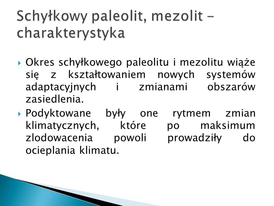 Schyłkowy paleolit, mezolit -charakterystyka