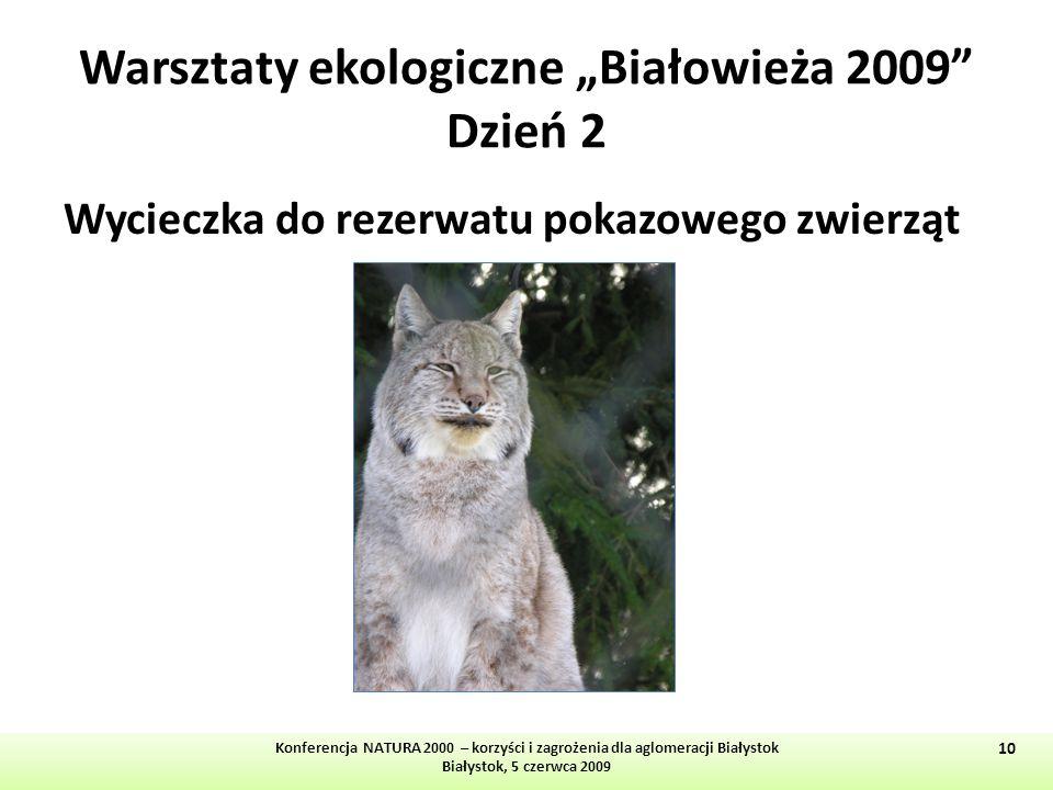 """Warsztaty ekologiczne """"Białowieża 2009 Dzień 2"""