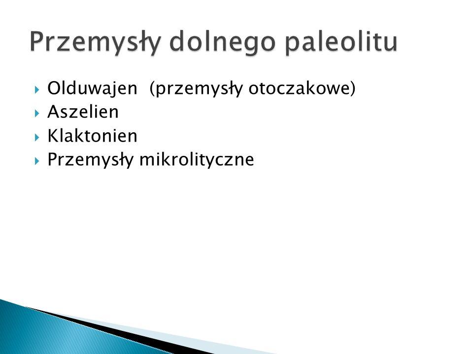 Przemysły dolnego paleolitu