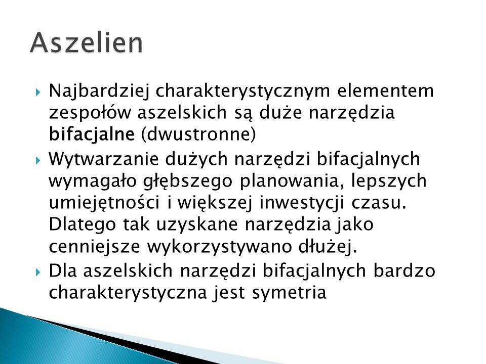 Aszelien Najbardziej charakterystycznym elementem zespołów aszelskich są duże narzędzia bifacjalne (dwustronne)