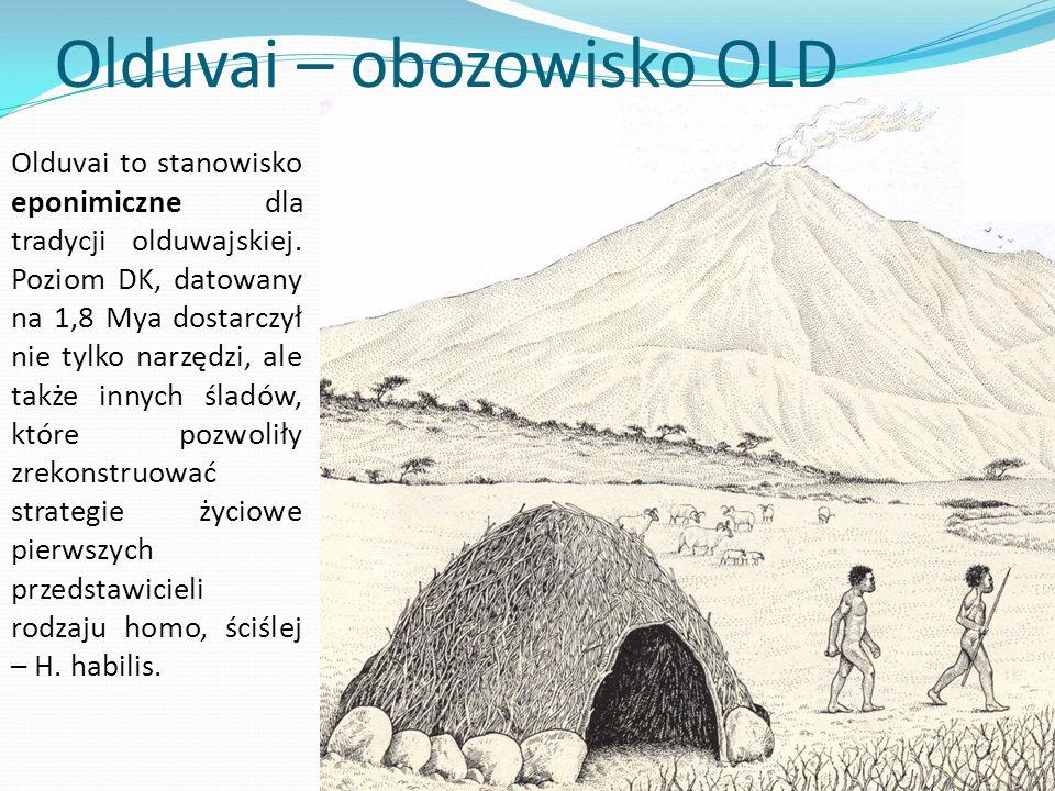 Olduvai – obozowisko OLD