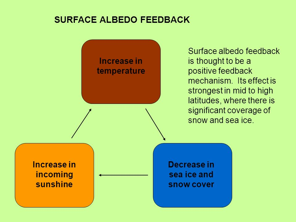 SURFACE ALBEDO FEEDBACK