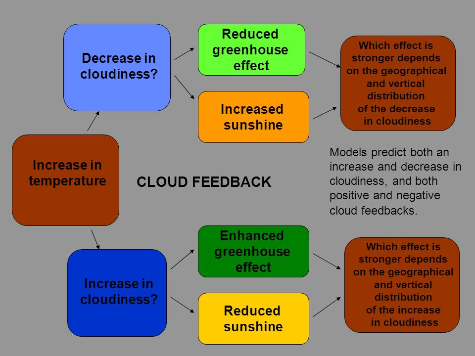 CLOUD FEEDBACK Reduced greenhouse effect Decrease in cloudiness