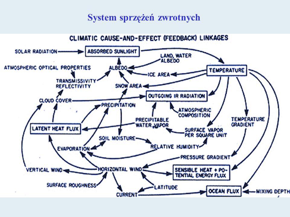 System sprzężeń zwrotnych