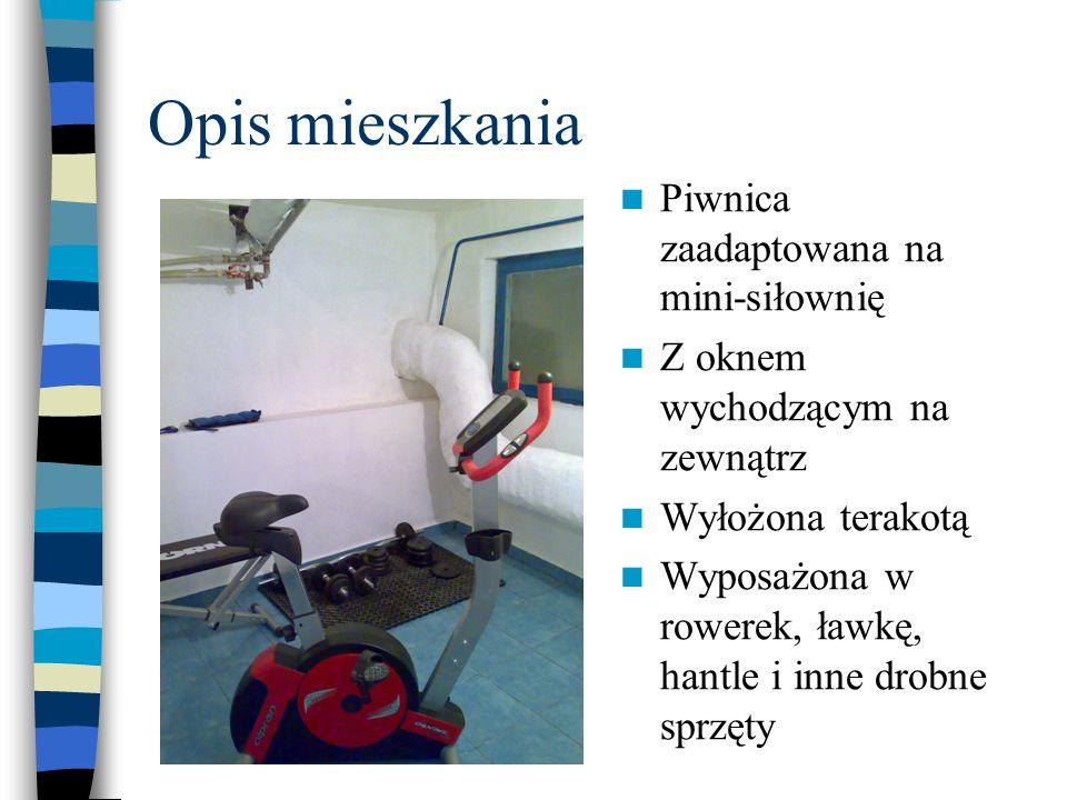 Opis mieszkania Piwnica zaadaptowana na mini-siłownię