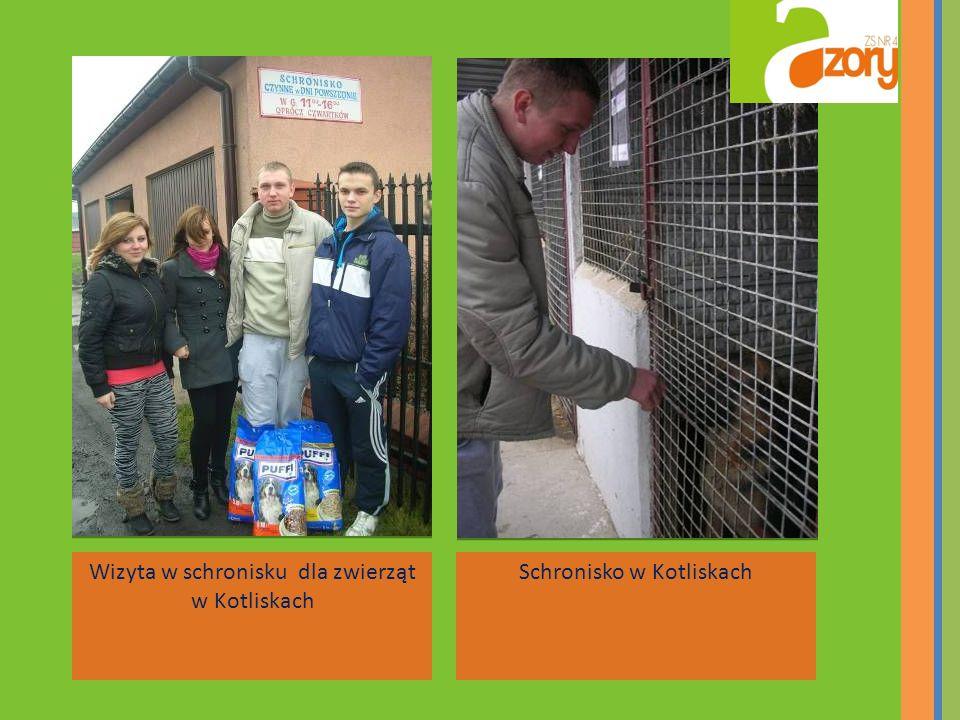 Wizyta w schronisku dla zwierząt w Kotliskach Schronisko w Kotliskach