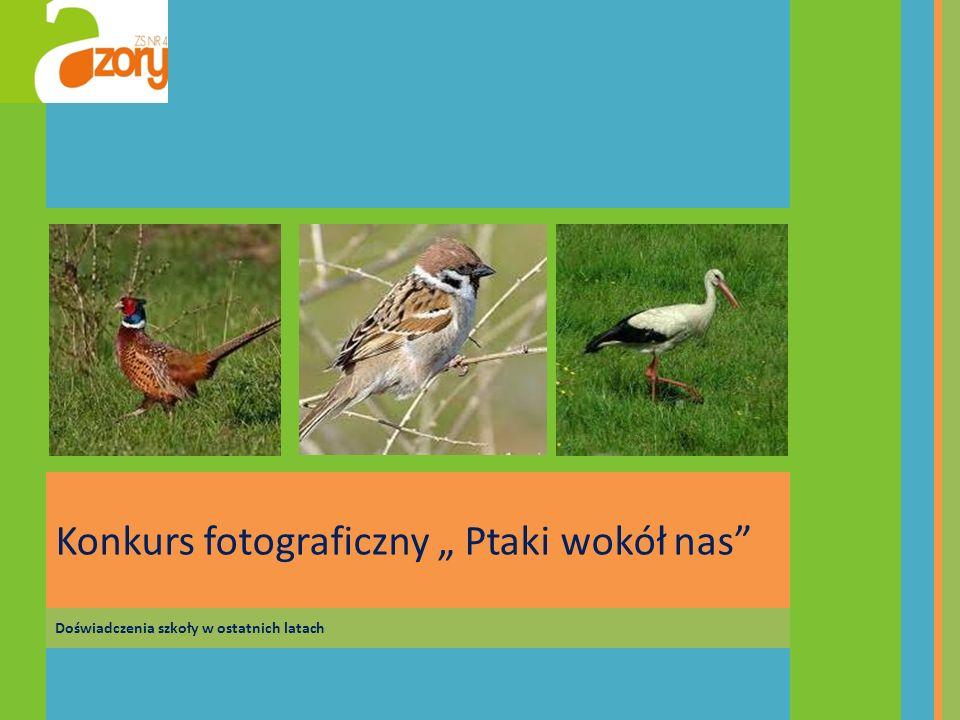 """Konkurs fotograficzny """" Ptaki wokół nas"""