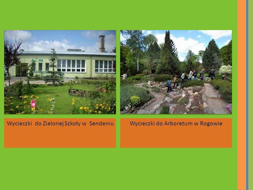 Wycieczki do Zielonej Szkoły w Sendeniu