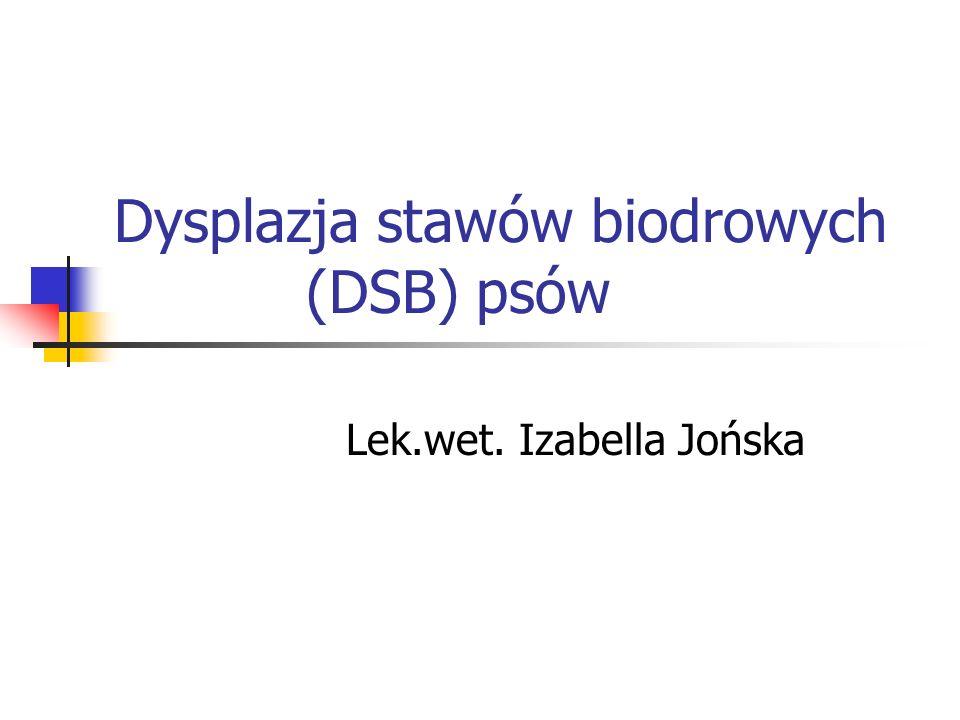 Dysplazja stawów biodrowych (DSB) psów
