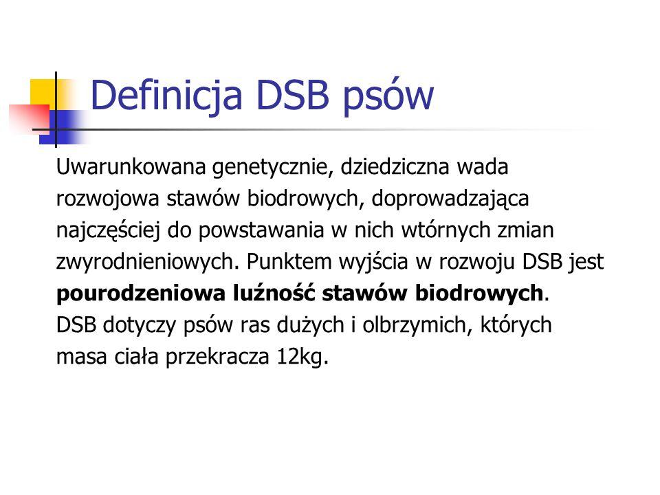 Definicja DSB psów Uwarunkowana genetycznie, dziedziczna wada