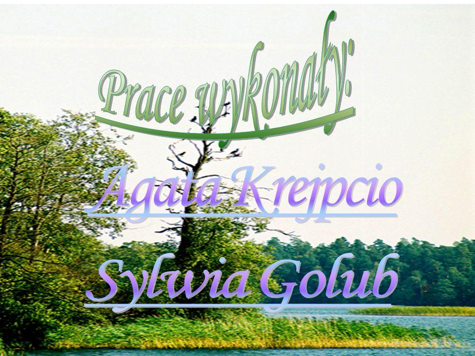 Prace wykonały: Agata Krejpcio Sylwia Golub