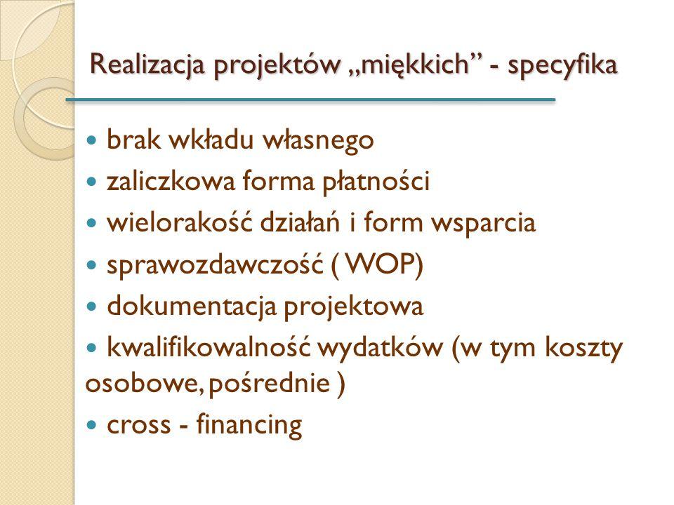 """Realizacja projektów """"miękkich - specyfika"""