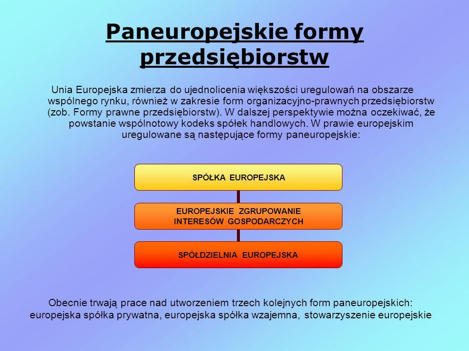 Paneuropejskie formy przedsiębiorstw