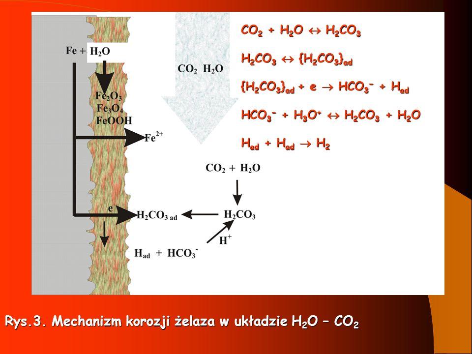 Rys.3. Mechanizm korozji żelaza w układzie H2O – CO2