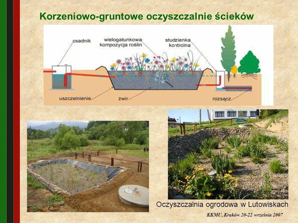 Oczyszczalnia ogrodowa w Lutowiskach
