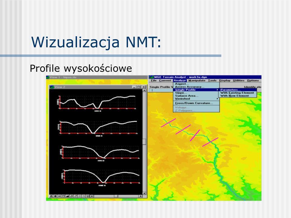 Wizualizacja NMT: Profile wysokościowe