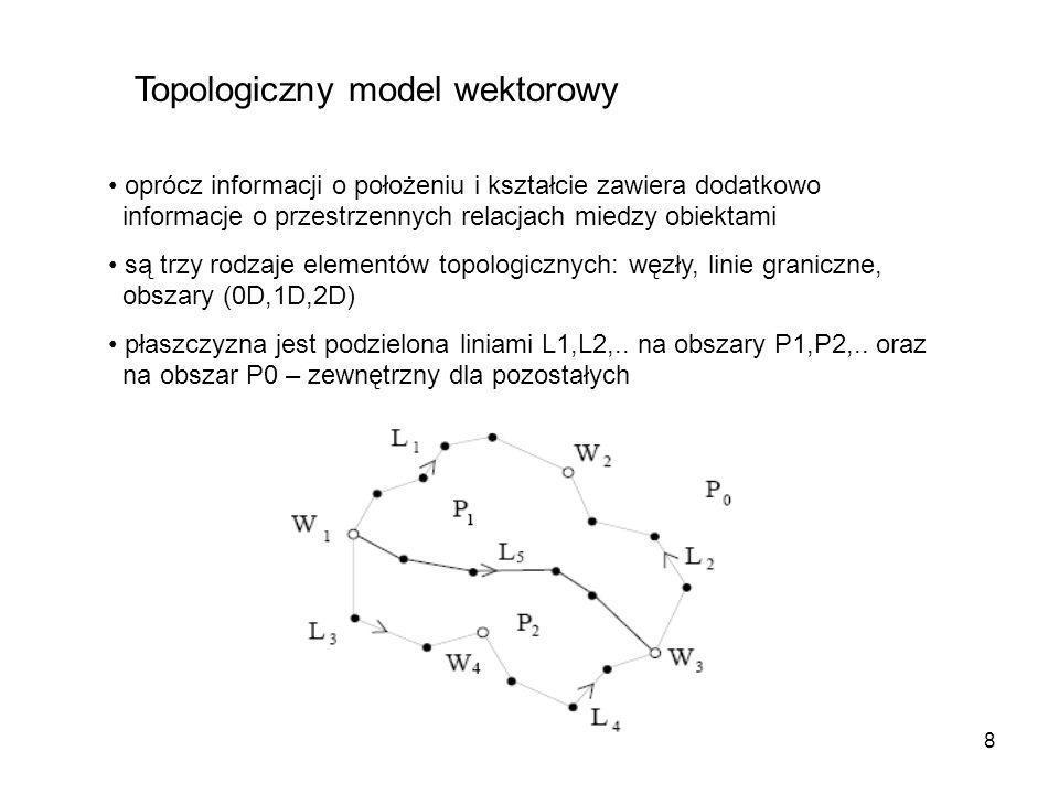 Topologiczny model wektorowy