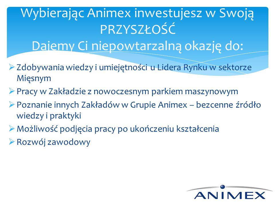 Wybierając Animex inwestujesz w Swoją PRZYSZŁOŚĆ Dajemy Ci niepowtarzalną okazję do: