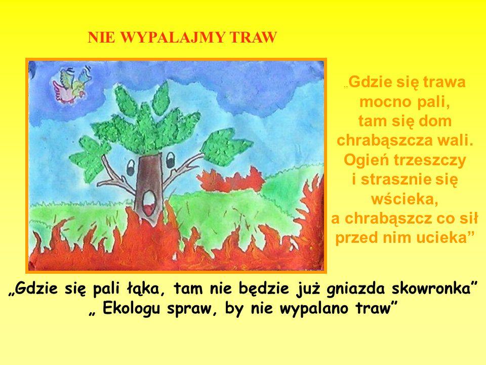 """""""Gdzie się pali łąka, tam nie będzie już gniazda skowronka"""