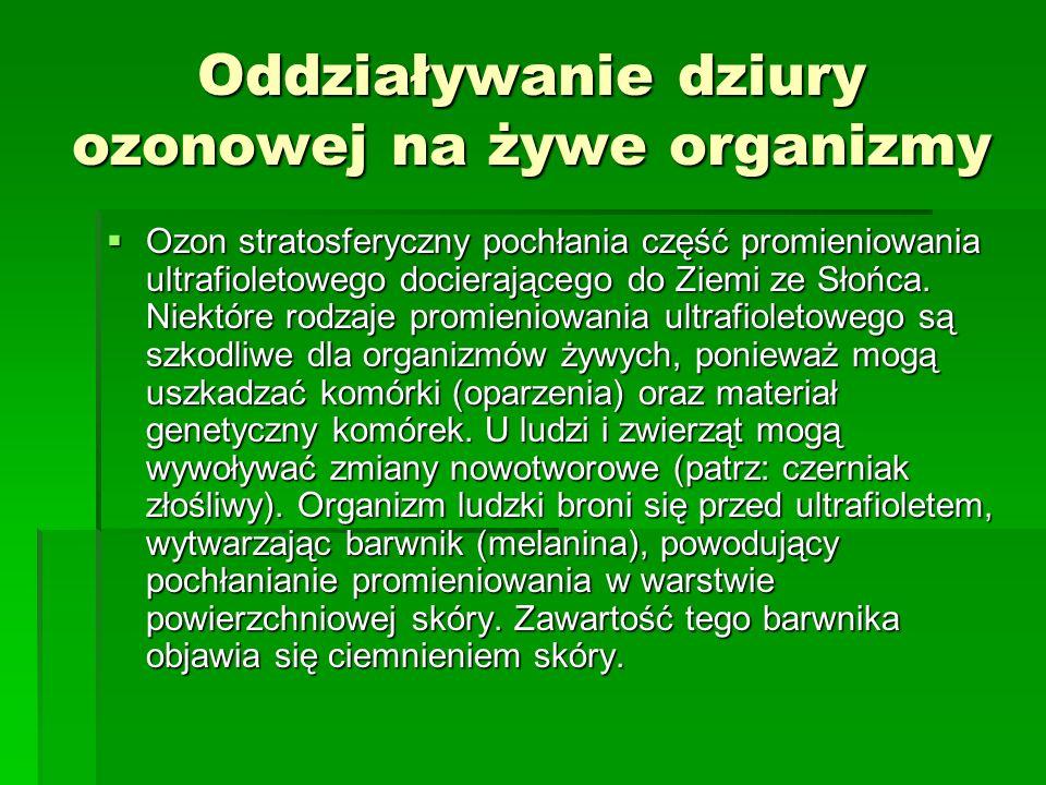 Oddziaływanie dziury ozonowej na żywe organizmy