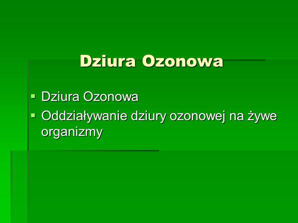 Dziura Ozonowa Dziura Ozonowa