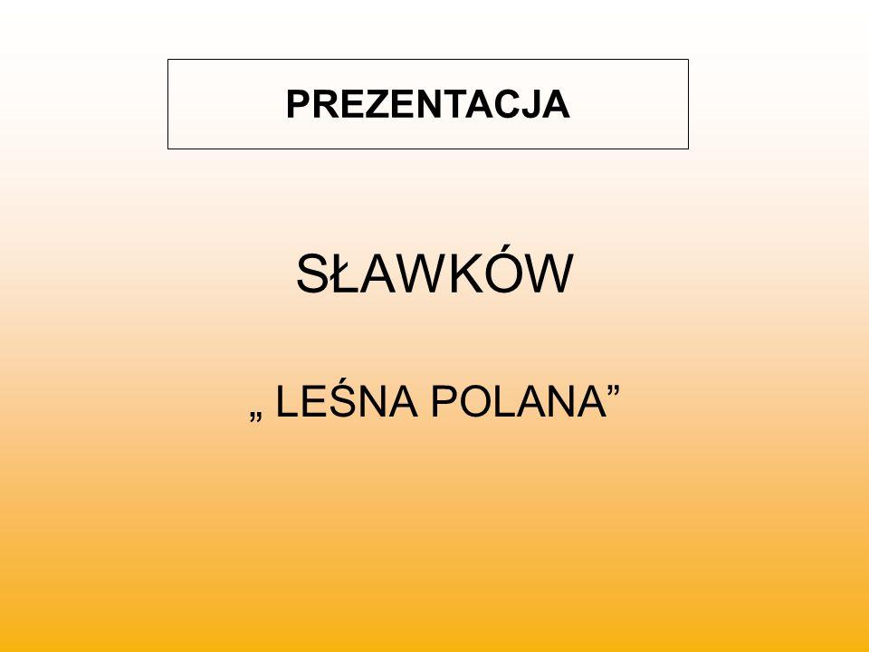 """PREZENTACJA SŁAWKÓW """" LEŚNA POLANA"""