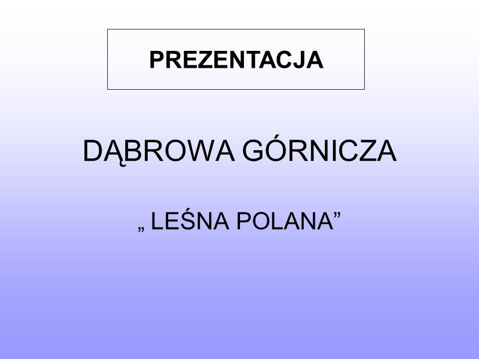 """PREZENTACJA DĄBROWA GÓRNICZA """" LEŚNA POLANA"""