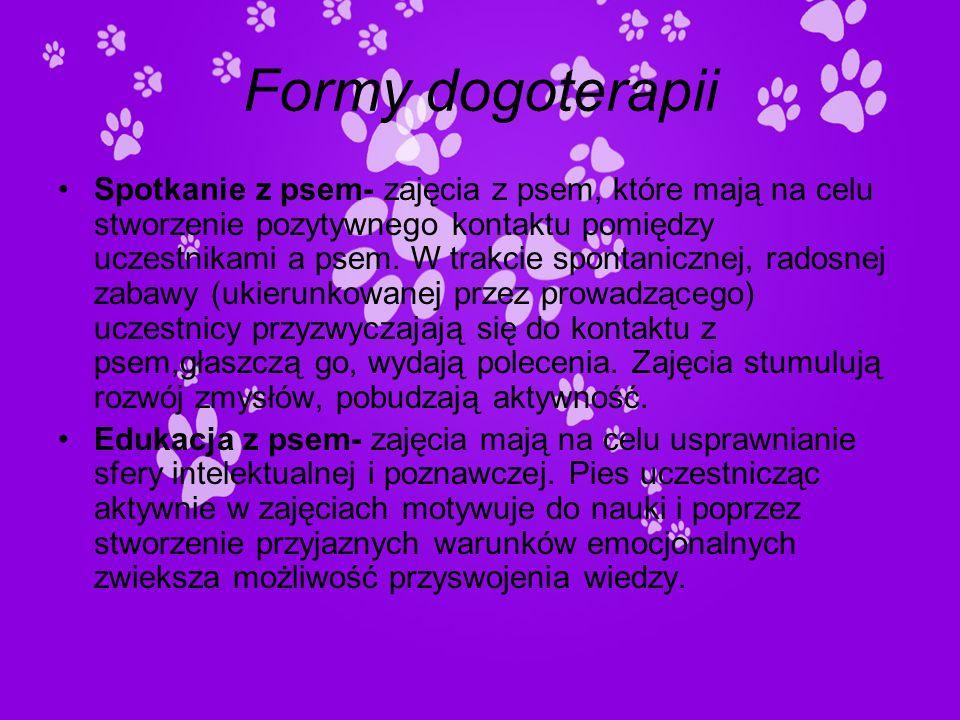 Formy dogoterapii