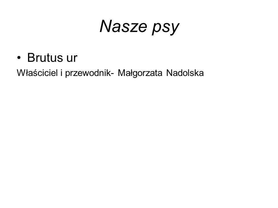 Nasze psy Brutus ur Właściciel i przewodnik- Małgorzata Nadolska