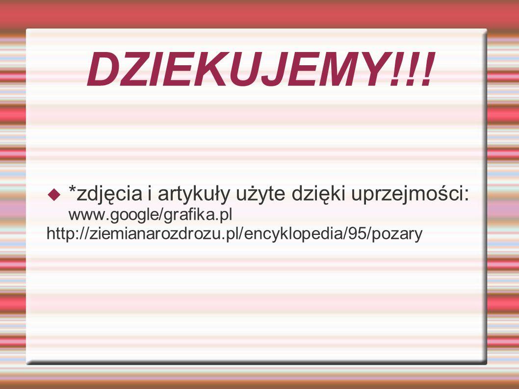 DZIEKUJEMY!!. *zdjęcia i artykuły użyte dzięki uprzejmości: www.google/grafika.pl.