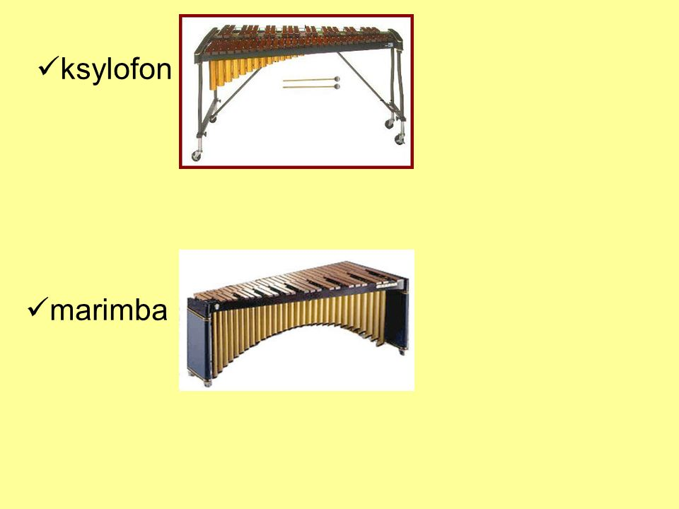 ksylofon marimba