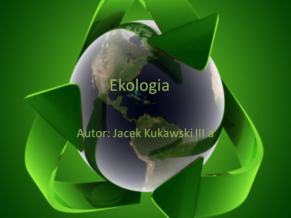 Autor: Jacek Kukawski III a