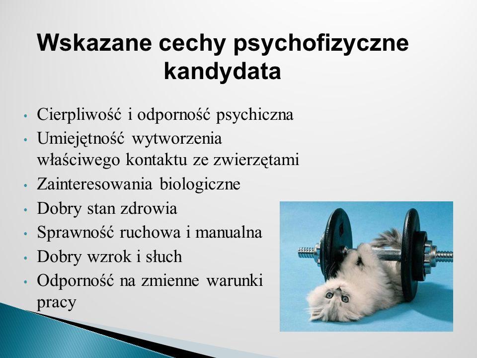 Wskazane cechy psychofizyczne