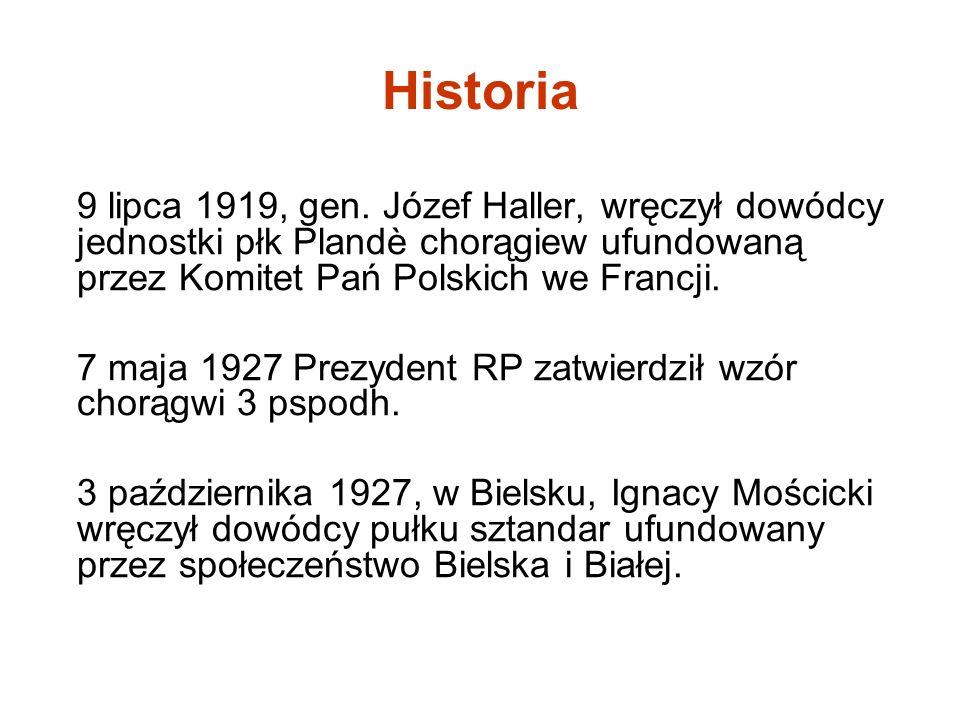 Historia 9 lipca 1919, gen. Józef Haller, wręczył dowódcy jednostki płk Plandè chorągiew ufundowaną przez Komitet Pań Polskich we Francji.