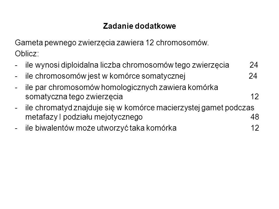 Zadanie dodatkowe Gameta pewnego zwierzęcia zawiera 12 chromosomów. Oblicz: ile wynosi diploidalna liczba chromosomów tego zwierzęcia 24.