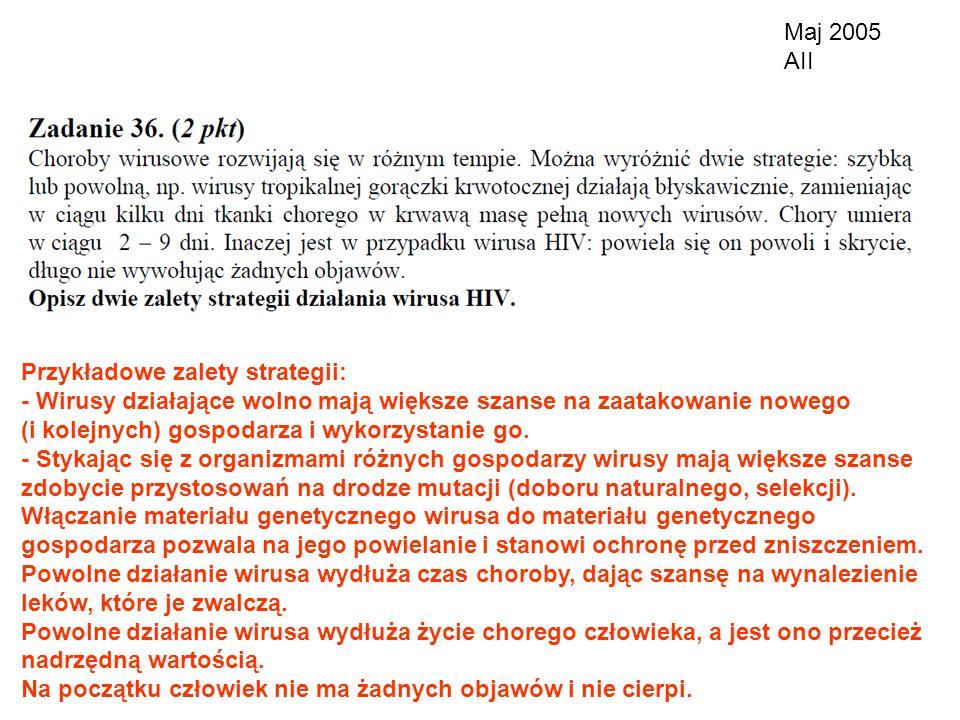 Maj 2005 AII Przykładowe zalety strategii: